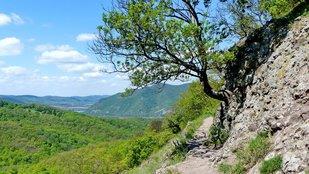 Körtúra a Duna-partról indulva a Visegrádi-hegységben