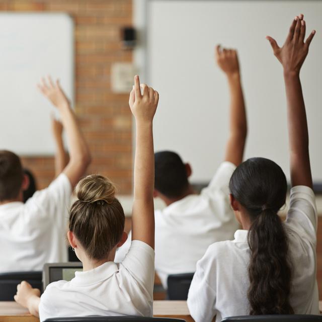 8 kérdés az általános iskolás biológiaanyagból: hogy nevezik a bőr belső rétegét?