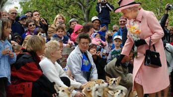 II. Erzsébet bejelentette a britek új állatjóléti törvényét