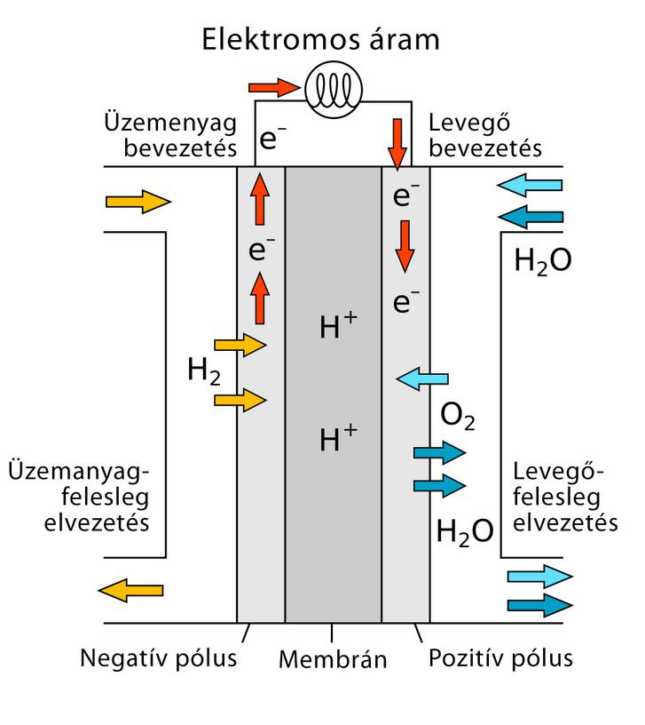 Így épül fel és működik az üzemanyagcella. A legfontosabb rész a középső membrán, jobbról és balról mellette a katalizátorral bevont elektródákkal
