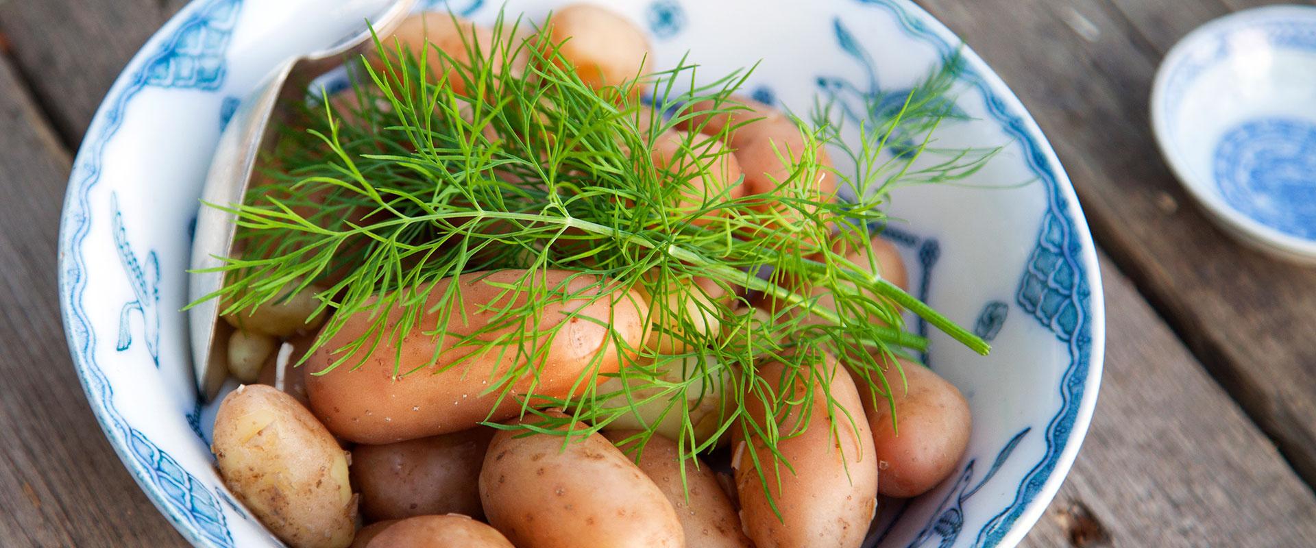 újkrumplo