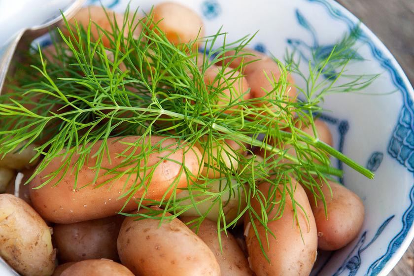 Mit érdemes és mit nem ajánlott újkrumpliból készíteni? Kedvenc receptjeinket is mutatjuk