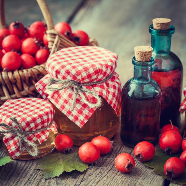 Csökkenti a koleszterinszintet, a vérnyomást és erősíti a szívet: a galagonya 5 áldásos hatása