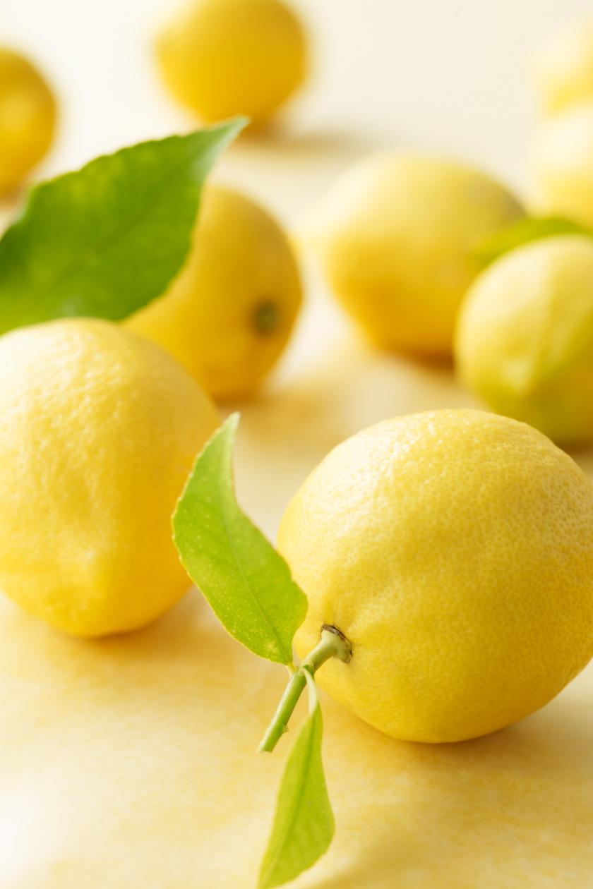 citrom álló ok