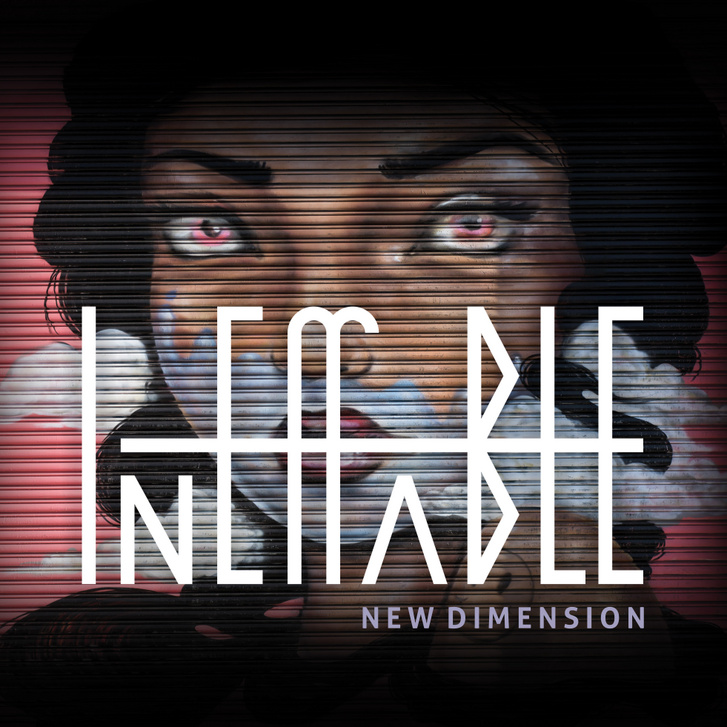 Ineffable New Dimension CD  cover