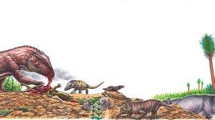 Katasztrófa vezethetett a dino-szauruszok felemelkedéséhez