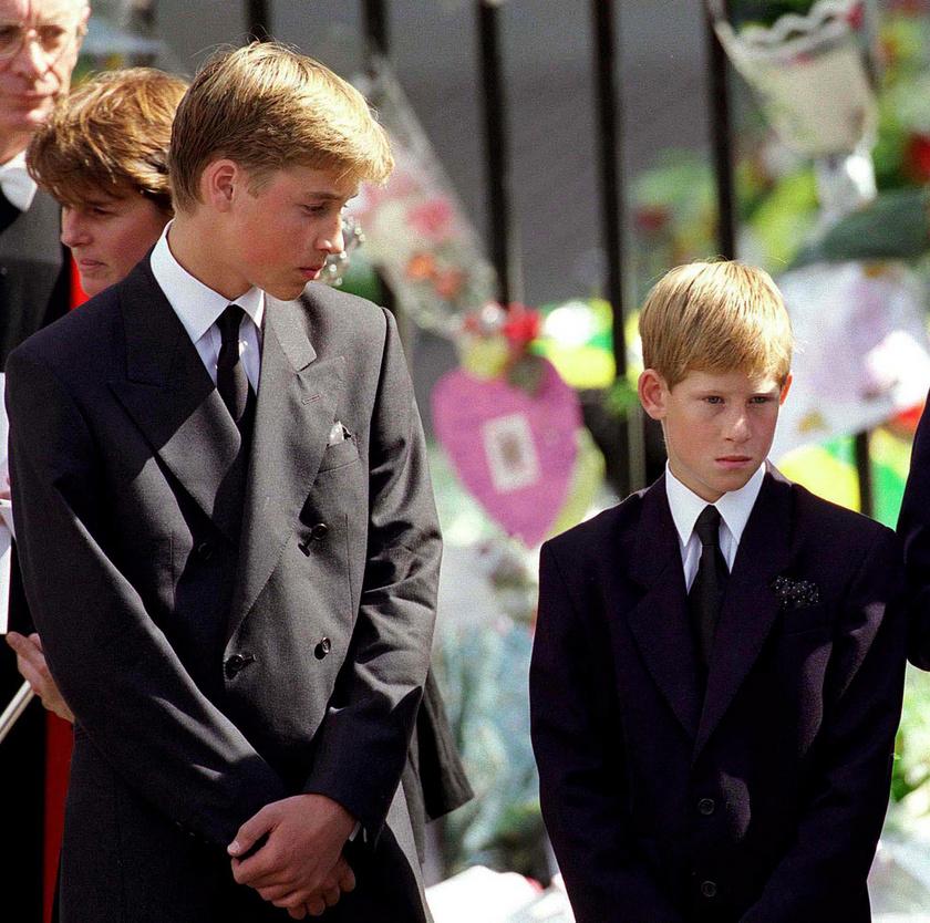 Harry herceg legnagyobb traumája édesanyja elvesztése volt.