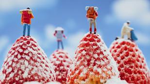 Háztartási kellékekből és minifigurákból alkot világokat egy kreatív fotóművész