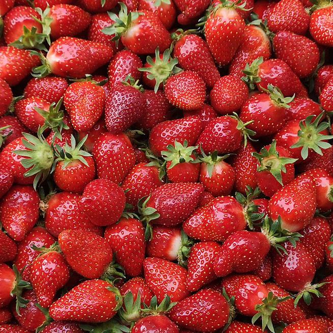 Mi a különbség az import és a magyar eper között? Hol érdemes hazait vásárolni?