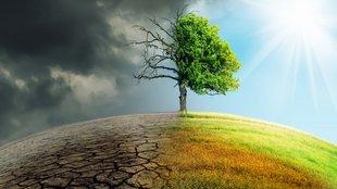 Így is tehetünk a klímaváltozás ellen