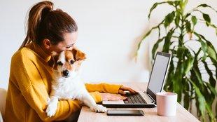 Top vállalatvezetők 5 tippje a hatékony otthoni munkanaphoz