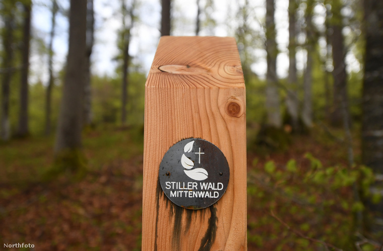 A koncepciót természetes temetőnek hívják, és mint látható, a megvalósítással sem különösebben zavarják meg az erdő életét - ilyen jelzés emlékezteti a sétálót arra, hol jár.