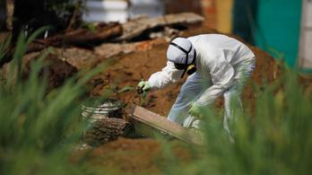 Két tucat ember maradványai kerültek elő egy volt rendőr kertjében