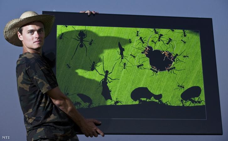 Máté Bence természetfotós tartja Árnyjáték című képét Pusztaszer határában 2011. augusztus 24-én