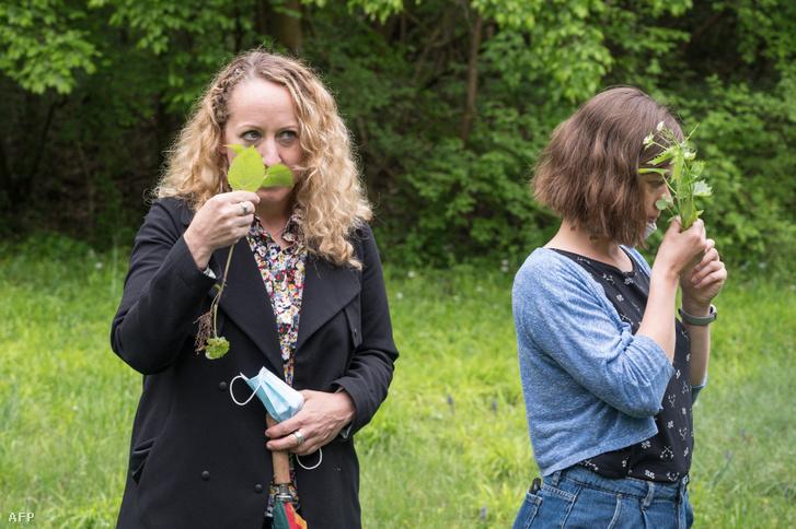 Nők növényeket szagolnak Franciaországban 2021. május 12-én