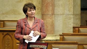 Pártot alapított Varga-Damm Andrea, a parlagon maradt választókat szólítaná meg