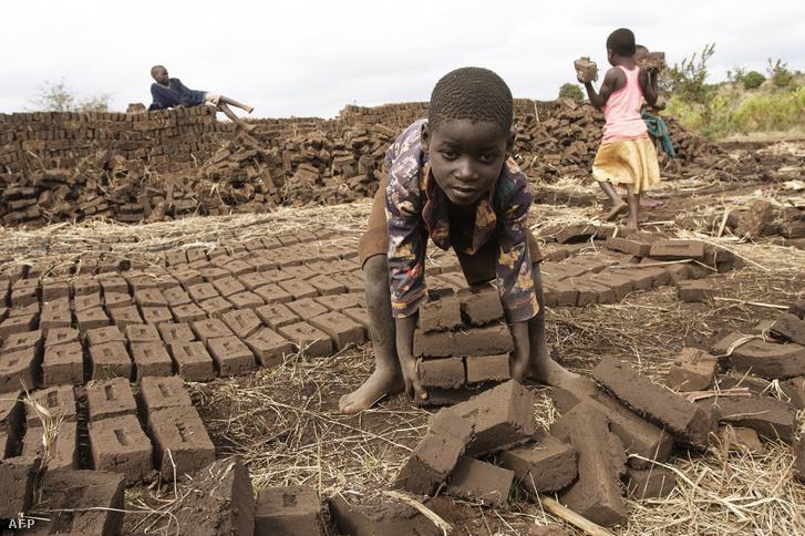 Gyerekmunkás Malawiban 2019-ben