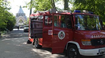 Kivonultak a tűzoltók a fővárosi állatkertbe