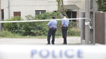 Javuló bűnügyi statisztikáról számolt be a budapesti rendőrség