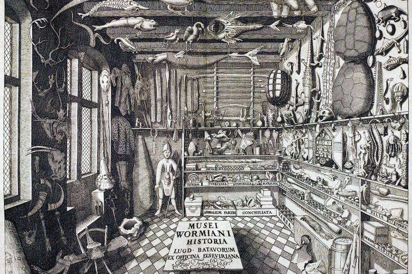Ole Worm dán orvos, természettörténész és antikvárius gyűjteménye: ez a kép a legkorábbi képi megjelenítése egy csodakamrának. (1599)