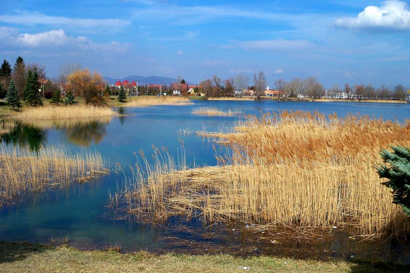 Az Omszki-tó.