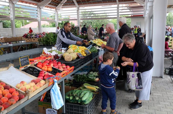 Vásárlók a helyi termelői piacon a megnyitó napján Abaújszántón 2020. július 17-én
