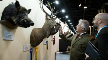 Még hatmilliárd forinttal drágult a budapesti vadászati kiállítás
