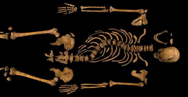 The-skeleton-of-Richard-I-013