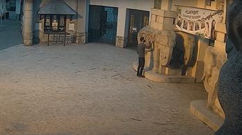 Ön ismeri? Videón az állatkerti elefántszobor pingálója