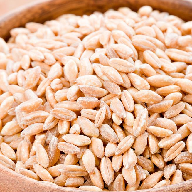 Mi az a farro és hogyan kell elkészíteni? Az ősi gabona egészséges és nagyon izgalmas alapanyag