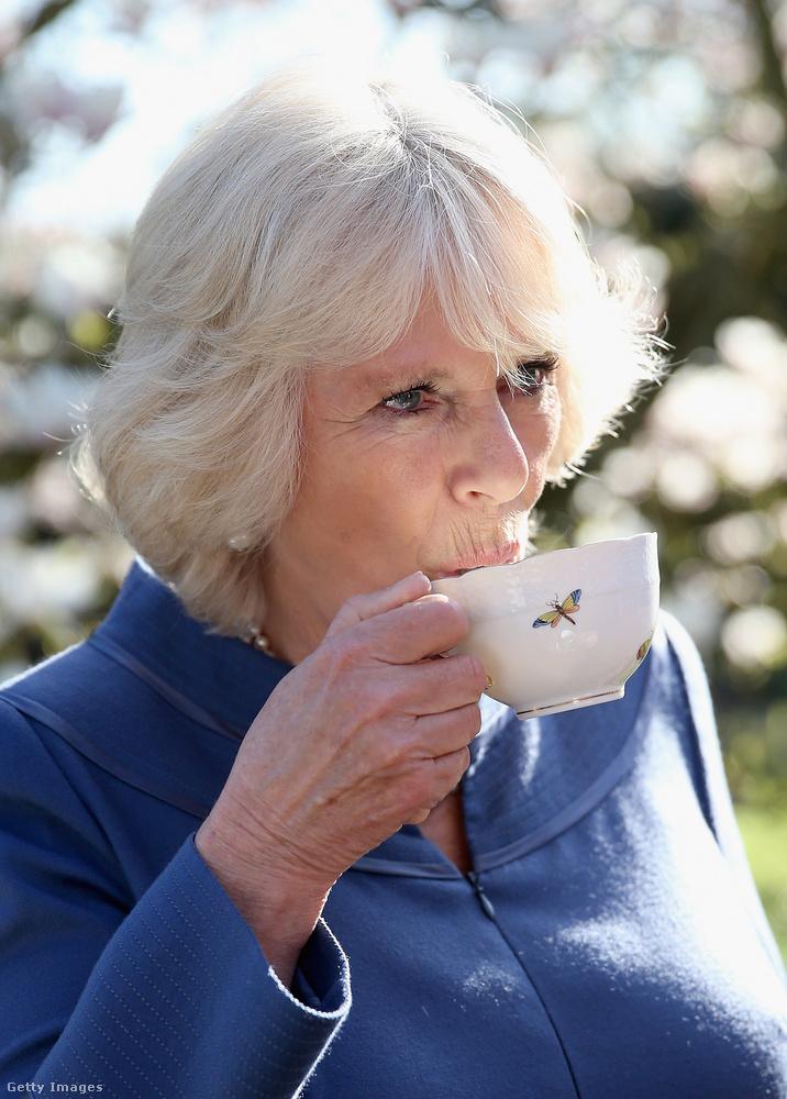 A teás csésze fogantyúját a mutatóujjukkal és a hüvelykujjukkal kell megfogniuk, miközben a középső ujjal egyensúlyozzák a csészét