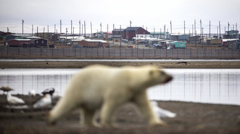 Biden felfüggesztette a Trump által engedélyezett sarkvidéki fúrási engedélyeket