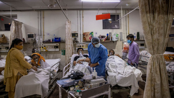 Halálos gombafertőzések pusztítanak Covid miatt kezelt betegek között