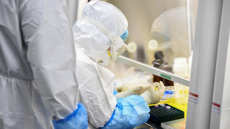 Online nyomozták ki, hogy a koronavírus egy laborszökevény
