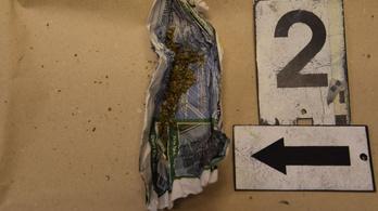 Körözte a rendőrség, kábítószert találtak nála