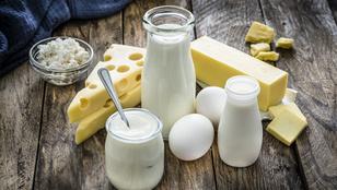 Nem csak a tejben van kalcium: infografikán a legjobb kalciumforrások