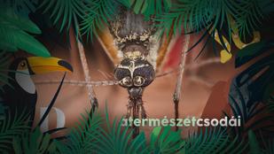Miért zümmögnek a szúnyogok az ember fülébe?