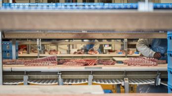 Egekben a zöldborsó ára, kevesebbet kell fizetni a sertéshúsért