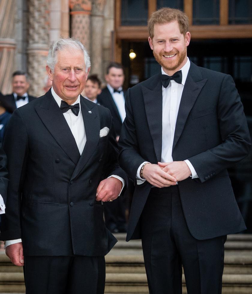 Lilibet Diana születése óta Károly és Harry folyamatosan tartják a kapcsolatot.