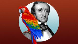 A világirodalom híres hollója papagájként kezdte pályafutását
