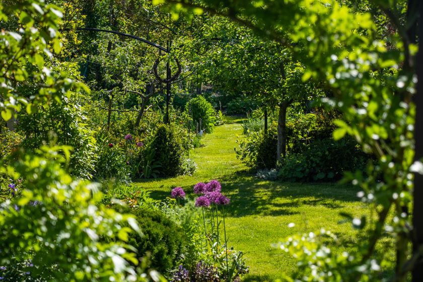 Csodálatos kert bújik meg a Rákos-patak partján: a különleges veteményesben jártunk