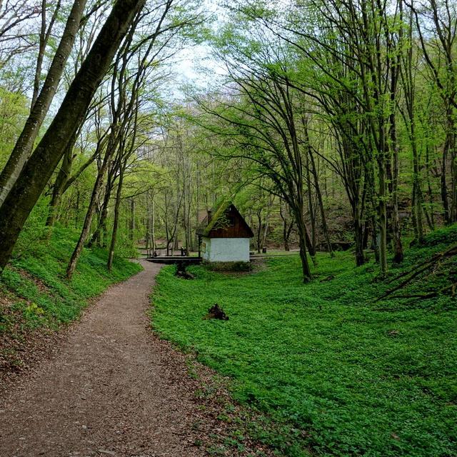 8 mesébe illő, érintetlen hegyi ösvény az országban: harsogó zöldben és nyugodalomban sétálhatsz