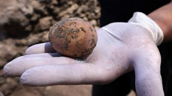 Ezeréves tyúktojásra bukkantak Izraelben