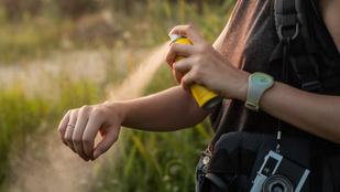 Teszt: Melyik a leghatékonyabb szúnyogriasztó?