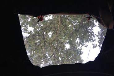 A tetőablakból most ezt láttam