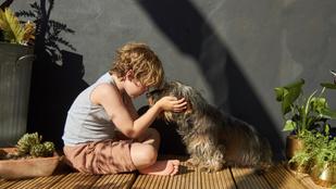 Kutya-gyerek barátság: jobb, ha a gyerek nem az állat feje búbját simogatja meg először