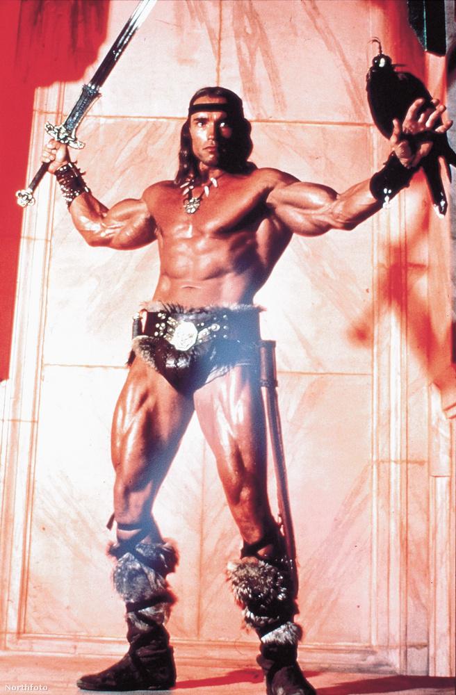 A filmbéli Conan a sztori szerint természetesen nem konditermekben gyúrta ki magát, hanem barbárkodás közben, de azért az osztrák testépítő annyira meggyőzően alakította őt, hogy a Conan hatalmas siker lett és beindította Schwarzenegger karrierjét, akinek a következő filmje a Conan második része volt, azután pedig már jött is az 1984-es Terminator