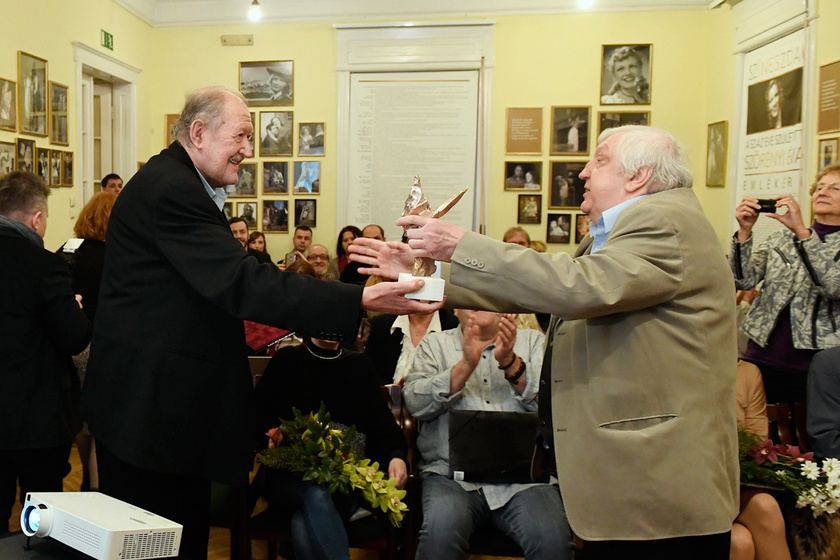 Nagy Zoltán 2017. december 18-án átvette az Ivánka Csaba-díjat a budapesti Bajor Gizi Színészmúzeumban.