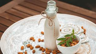 Ezek a legjobb növényi tejtermék-helyettesítők