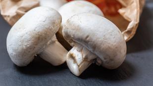Így tárold a gombát, hogy minél tovább friss maradjon